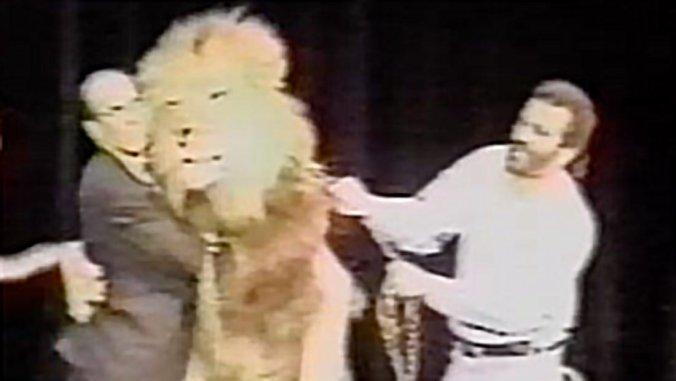 el rey leon 8